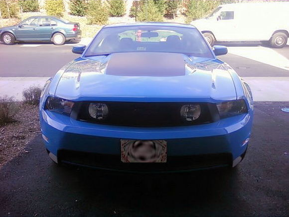 mustangfront