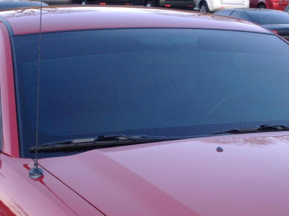 windshield tinted at 50%