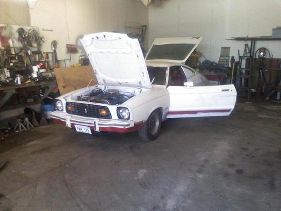 ted car