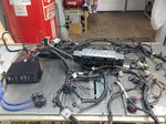 Ford performance control pack and engine harness coyote