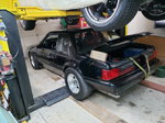 Fox Body Mustang 1988