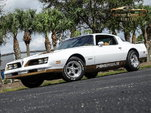 1978 Pontiac Firebird  for sale $23,995