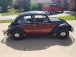 1967 Volkswagen Beetle  for sale $12,500