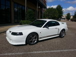 2001 Ford Mustang  for sale $24,900