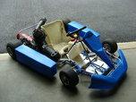 Easykart 125cc TAG kart  for sale $3,000