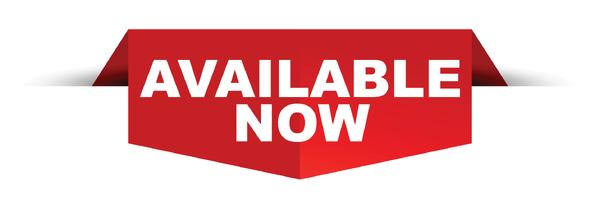 2021 Sundowner TrailBlazer 8.5X19 RV/ATV Trailer