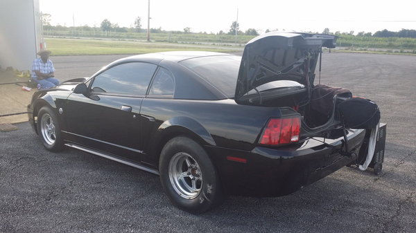 2002 Mustang roller  for Sale $9,000