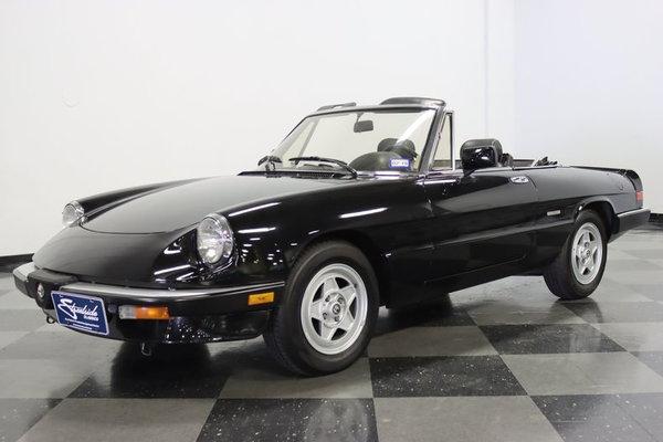 1986 Alfa Romeo Spider Veloce  for Sale $14,995