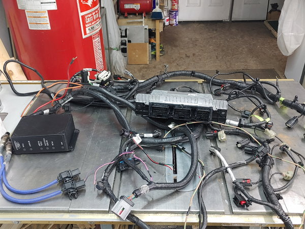 Ford performance control pack and engine harness coyote  for Sale $1,500