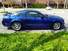 MustangGTMarch2013017