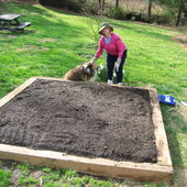 Judy helps with constructing raised bed for vegetables