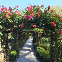 The Rose Arch Walkway
