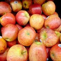 Apple 'Royal Gala'