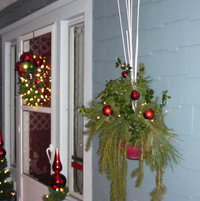 More 2013 Christmas / Winter interest live greens on our front porch wall.