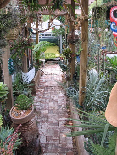 Here\'s the look down the central aisle where the rope path allows our parrot to peruse the back yard without having to go to the ground (she can\'t fly) and deal with the dogs.  Room for plants is getting scarce, so many new plants now live in pots on little plants stands or palm trunks about the yard