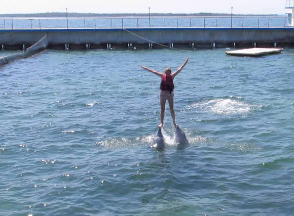 Me in Cuba with the dolphins!