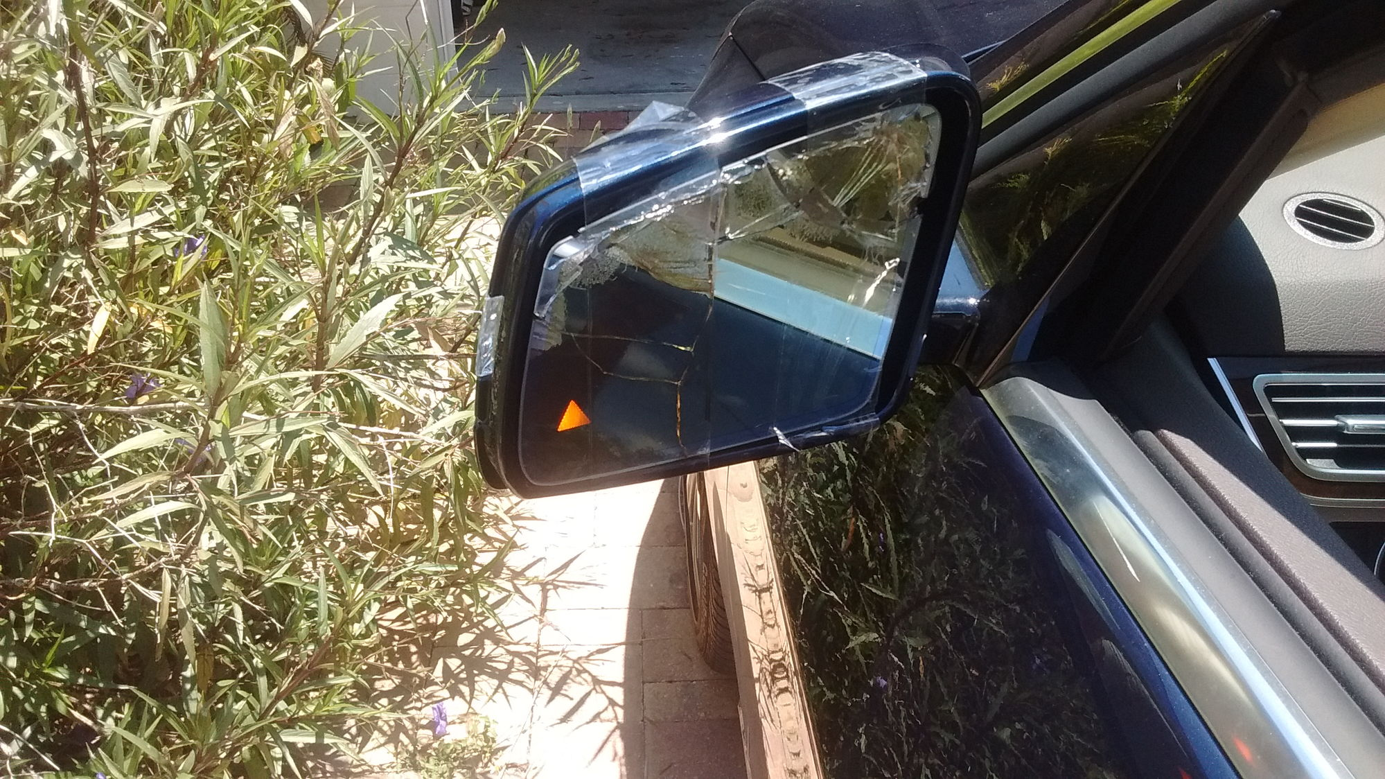 Side Mirror Folding Mechanism And Glass As The Left Is Damaged