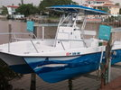 26 twin vee for sale
