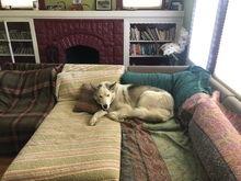 Max chilling