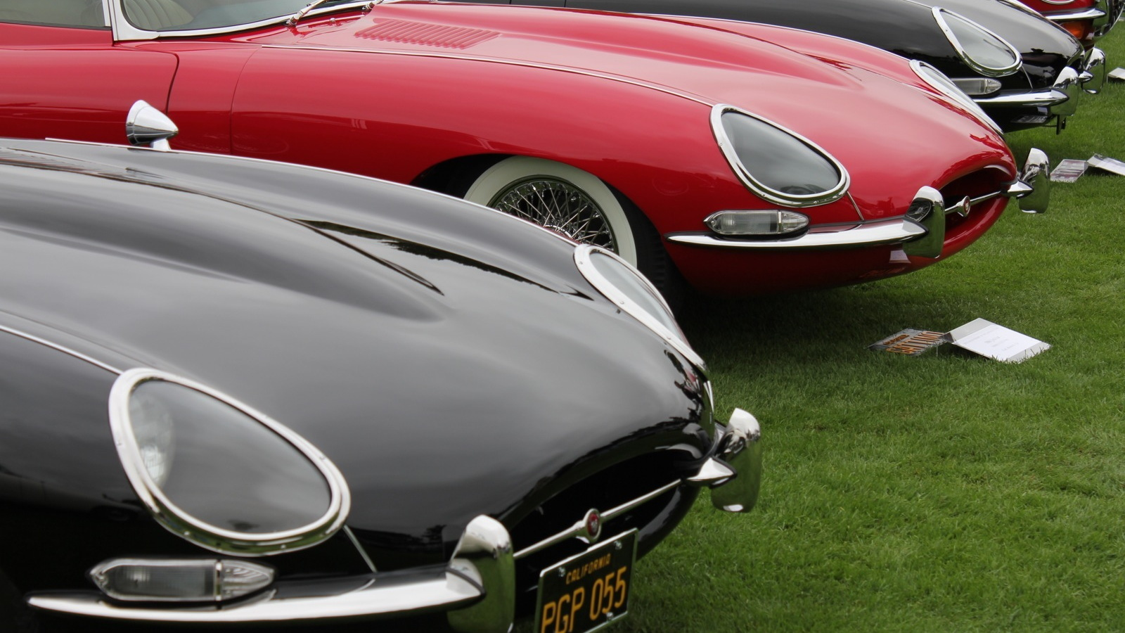 Jaguar E-Type 50th anniversary, The Quail