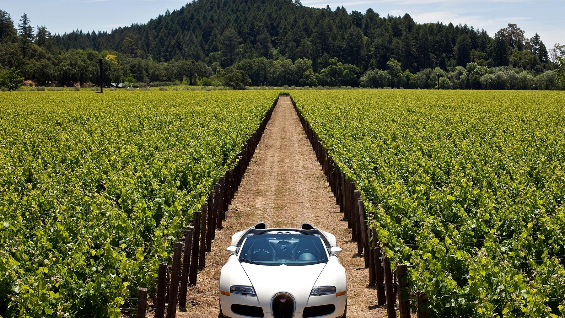 bugatti veyron grand sport napa valley 016