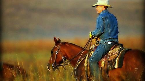 Texas cowboy by Flickr user aechempati