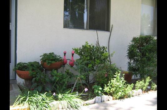 Image Of Claremont Gardens In Claremont, CA