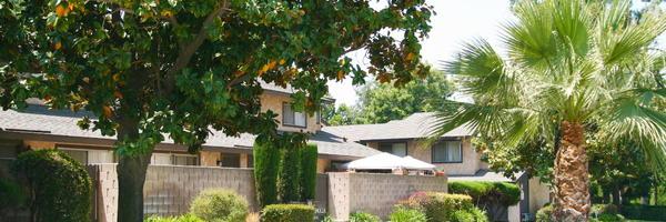 Park Magnolia