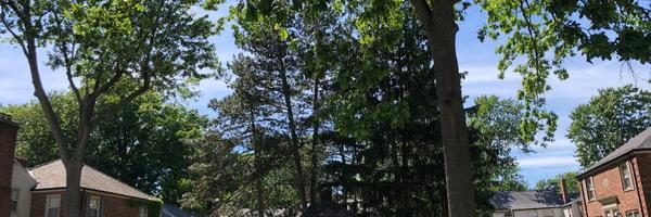 Springwells Park