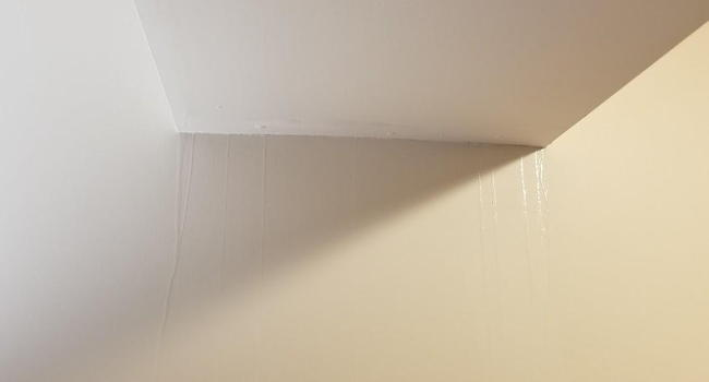 water pouring down my wall