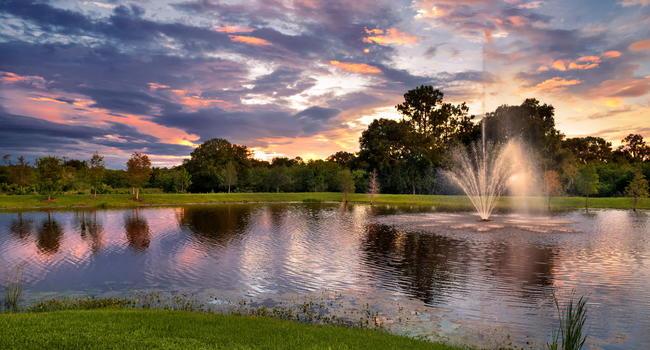 Luxe Lakewood Ranch - 132 Reviews   Bradenton, FL ...